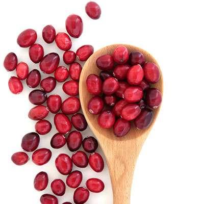 Lentil cranberry salad